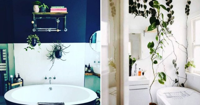 14 Photos That Will Make You Want To Fill Your Bathroom With