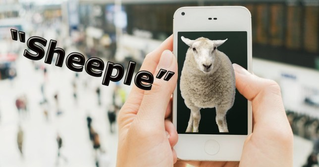 Sheeple is now an official word and iPhone fans are being used as an