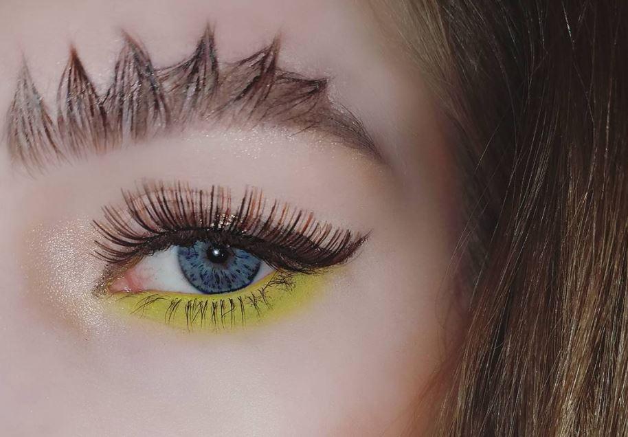 dragon brows