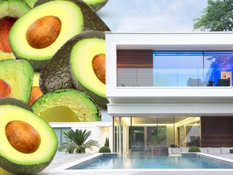 How to buy a house and still enjoy avocado toast