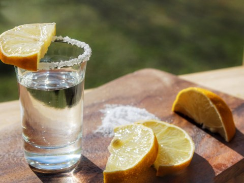 Tequila could be good for your bones, according to science