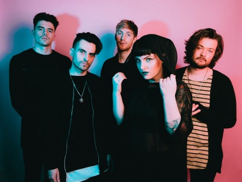 Artist of the day 01/06: Tigress