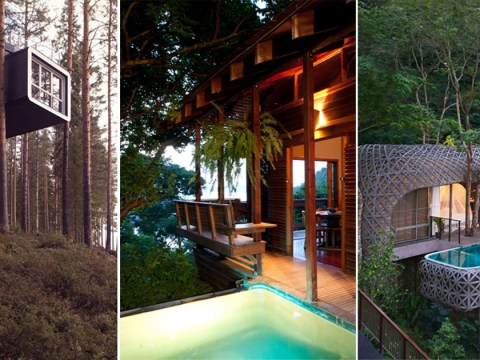 The best tree house hotels in the world have been revealed