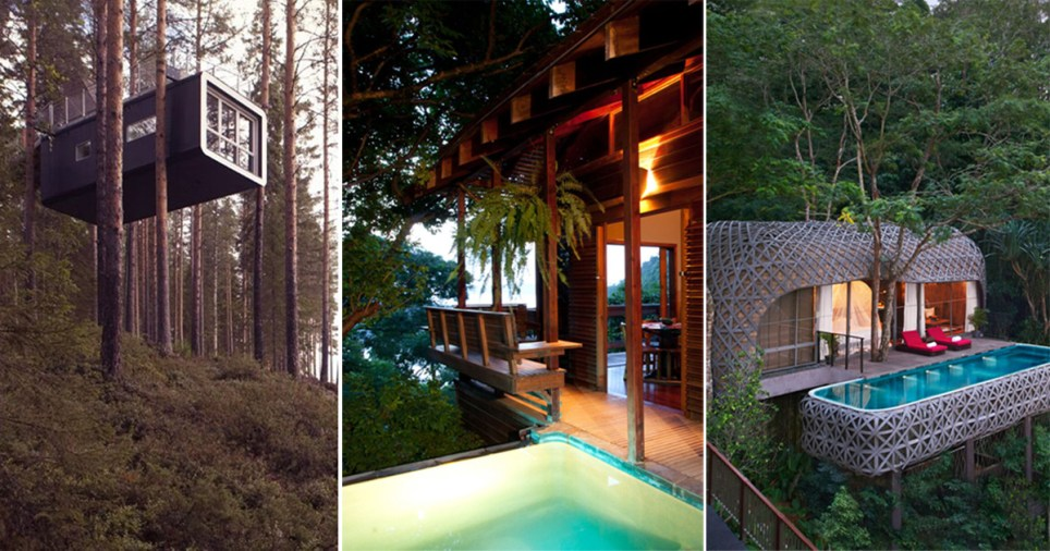 treehouse_feature