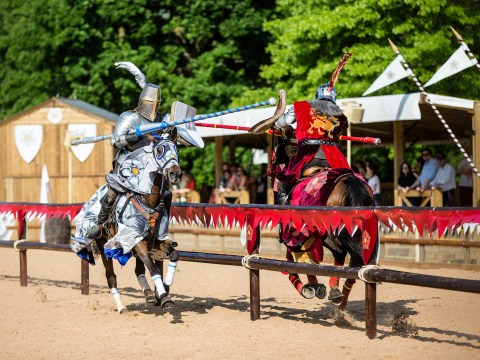 History comes to life on horseback at War Of The Roses show