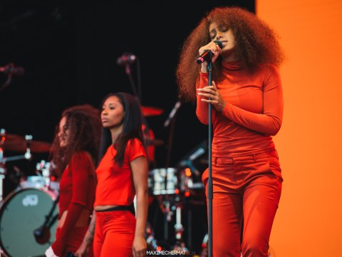 Beyonce's sister Solange Knowles rocked up to an eco-friendly festival in Paris and sh*t got intense