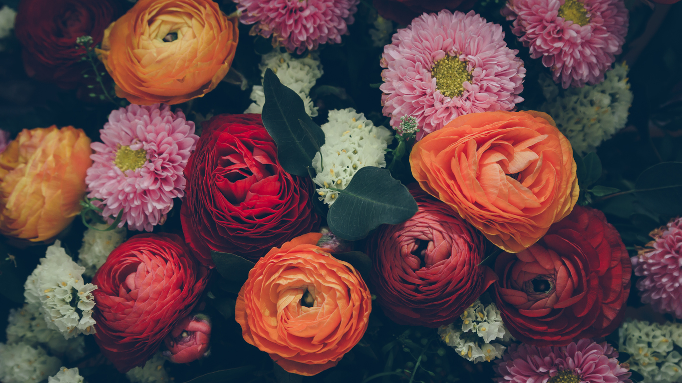 This florist offers a blooming lovely way to support refugees