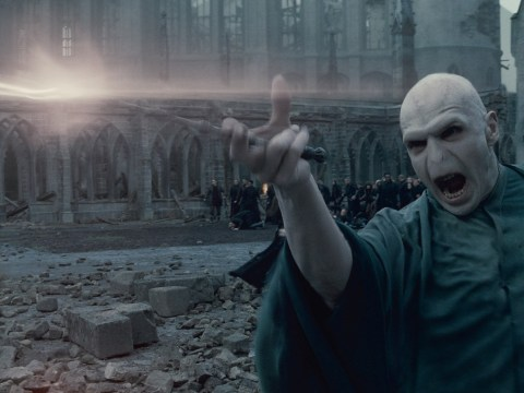 Ralph Fiennes reveals secret behind Voldemort's wand in the Harry Potter films