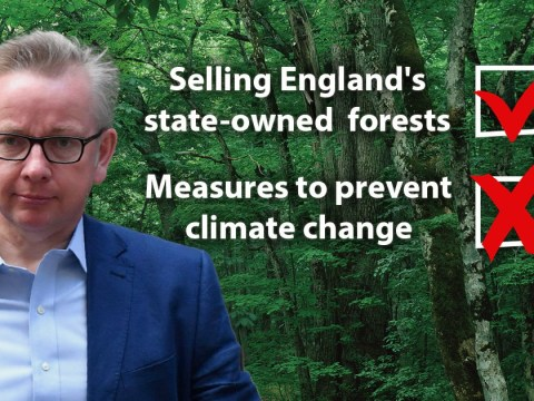 New environment minister voted against climate targets and wanted to sell off forests