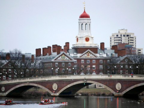 Harvard withdraws students' offers over memes posted in private Facebook group