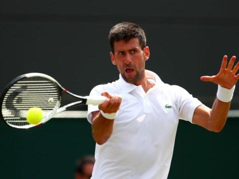 Novak Djokovic responds to John McEnroe's Tiger Woods comparison