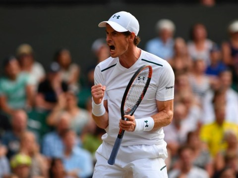Andy Murray reaches Wimbledon fourth round for 10th straight year after Fabio Fognini win
