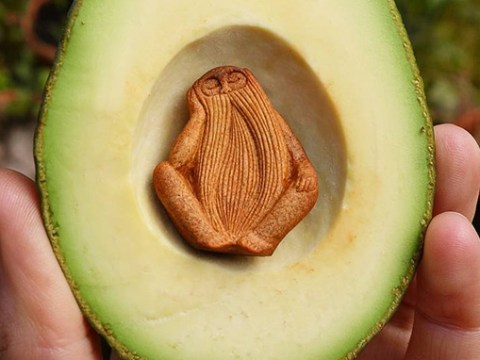 Artist creates the most gorgeously intricate designs using avocado stones