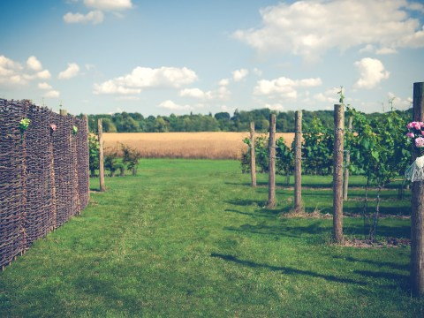 Competition: Win 2 tickets to Vineyards of Hampshire wine tasting festival