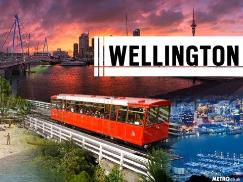 6 great reasons why Wellington is the best city in the world