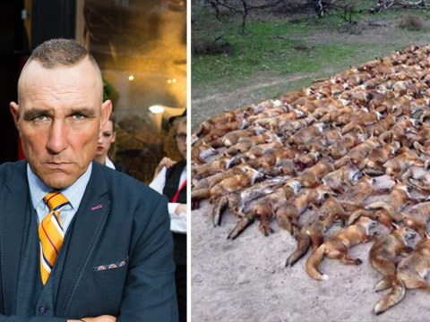 Vinnie Jones blames hackers after photo of dead foxes appears on his Twitter