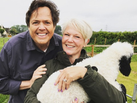 Pop legend Jimmy Osmond has bought two very rare sheep and they are just adorable