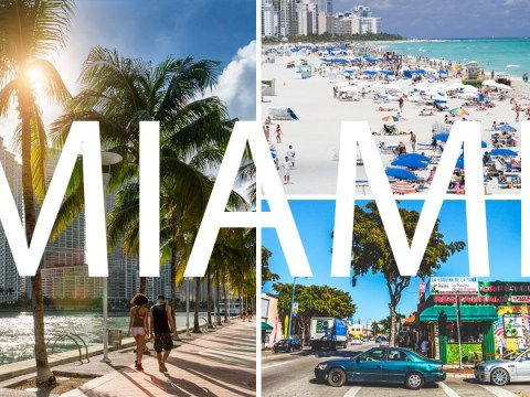 Wynwood, Downtown, Little Havana and South Beach: The best places to visit in Miami