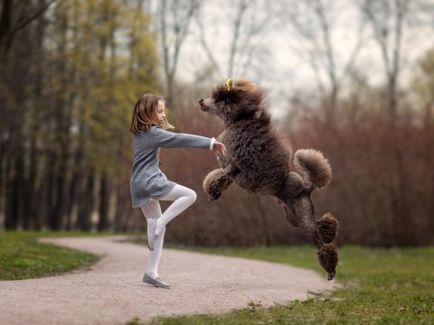 Meet Maria, the young ballerina whose dogs are equally as in to ballet