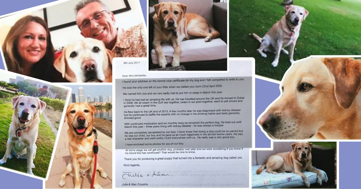 Devastated couple write heartbreaking letter to their late