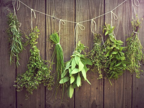Start freezing fresh herbs, it will change your culinary life