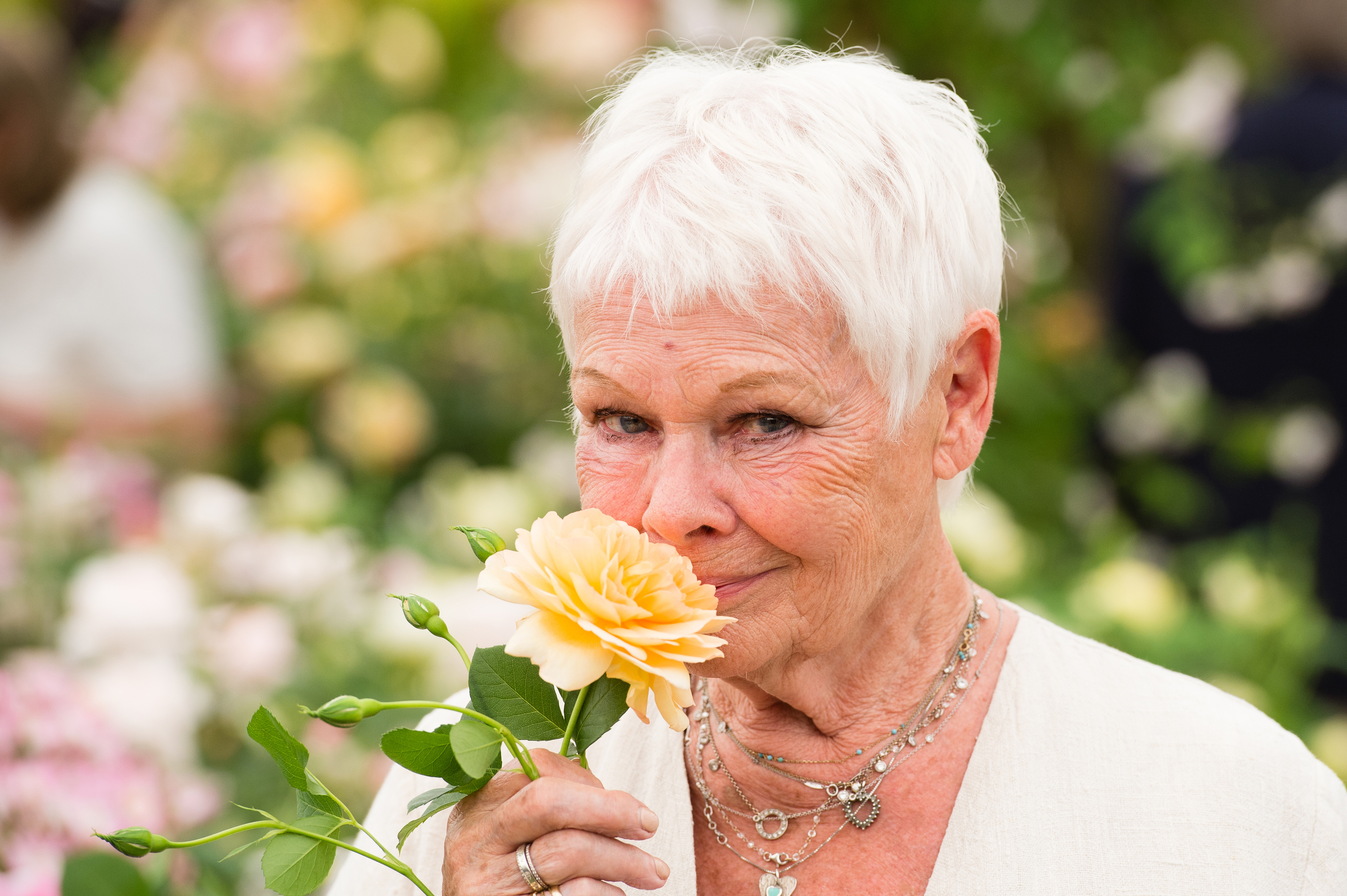 Dame Judi Dench tells older people not to give up on their sex lives