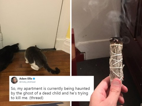 Man live-tweets terrifying story of being haunted by a little boy in his apartment