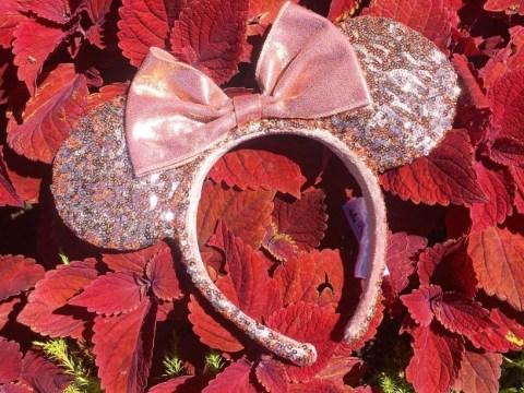 Disney's finally got in on the millennial pink trend with their new rose gold Minnie Mouse ears