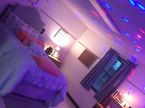 University student's dorm room is nicer than what you'd pay for in some hotels