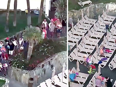 Brit tourists filmed sprinting to bag sunbeds nearest swimming pool