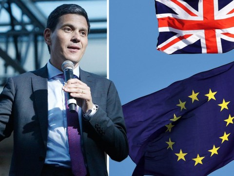 David Miliband is back and he wants a second EU referendum
