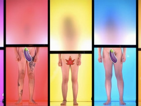 Fancy meeting your future partner fully starkers? Dating show Naked Attraction is looking for nude recruits