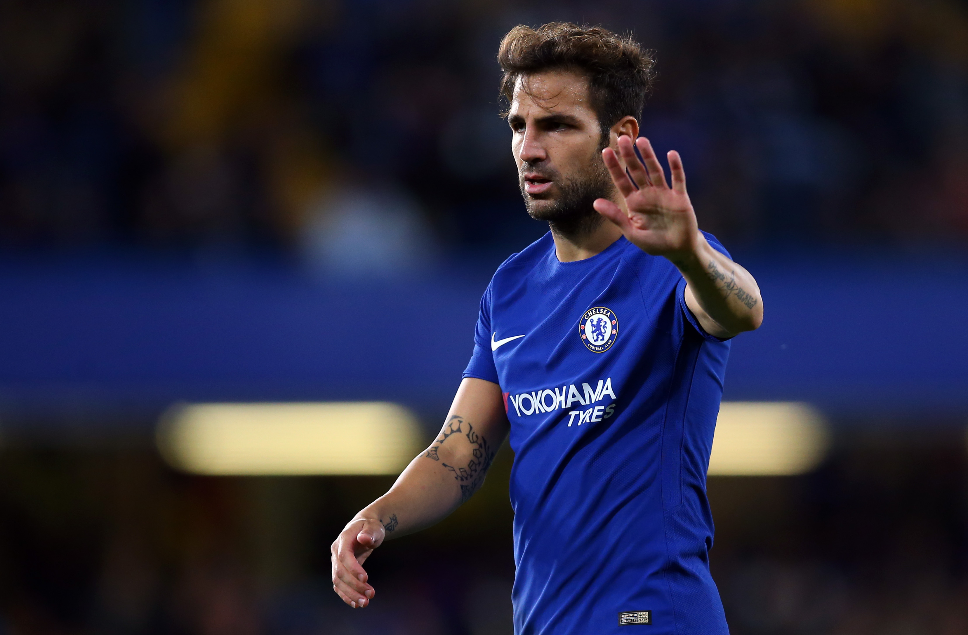 Chelsea's Cesc Fabregas hails Diego Costa as best-ever strike partner