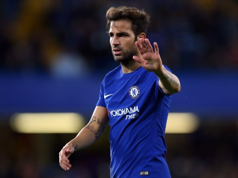 Chelsea's Cesc Fabregas hails Diego Costa as best-ever strike partner