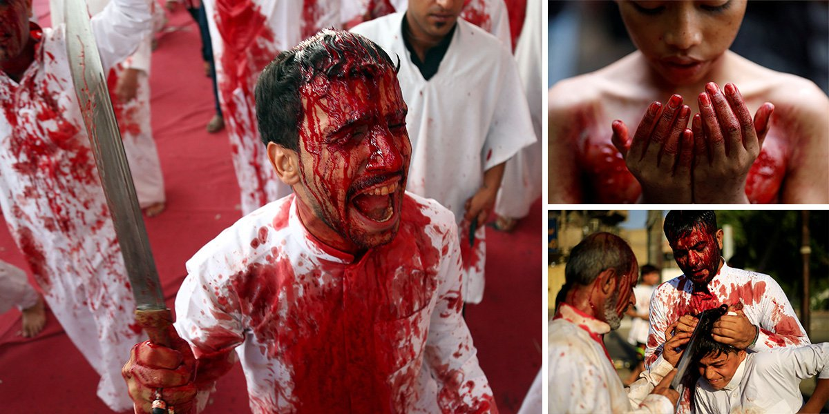 Blood runs down the heads of thousands of pilgrims gathered at Iraqi shrine city