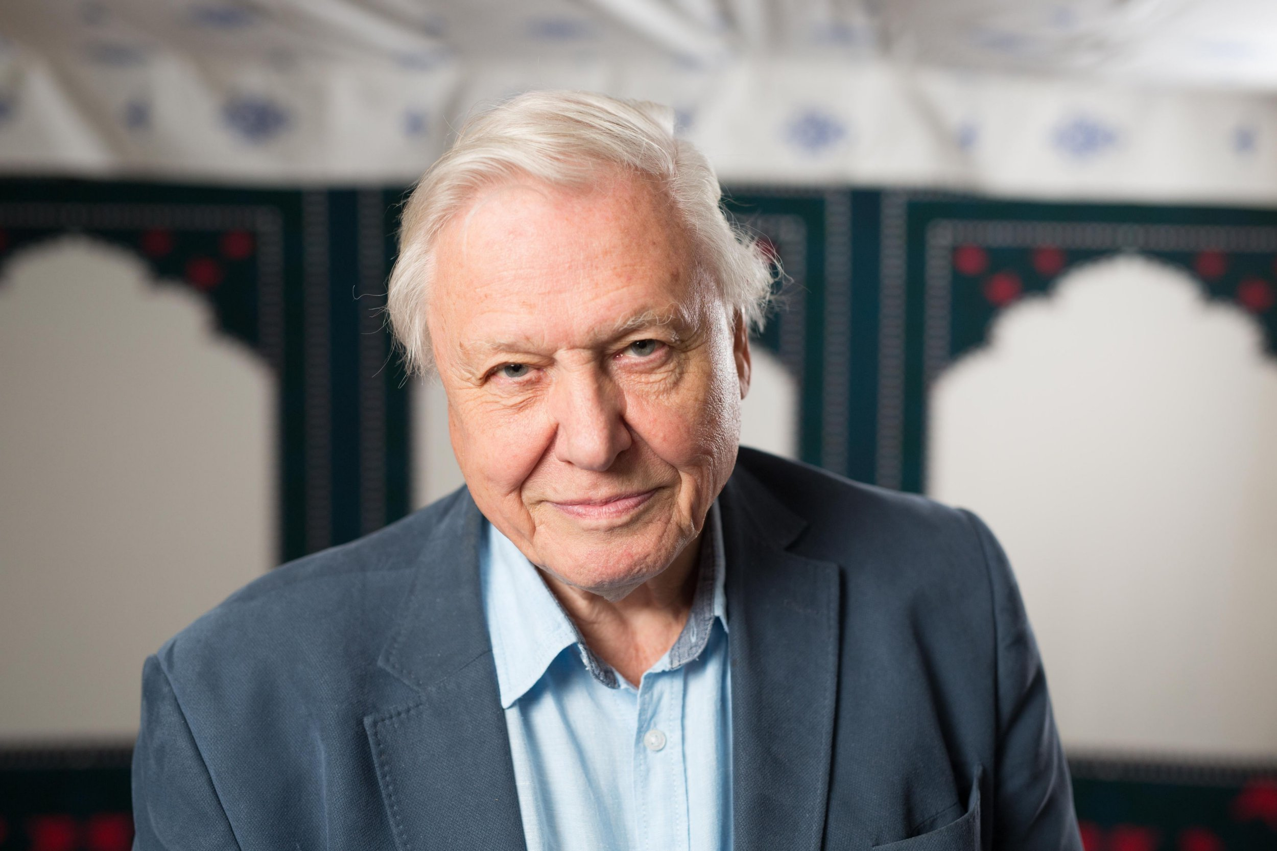 David Attenborough shows no signs of slowing down as he presents new wildlife show Dynasty