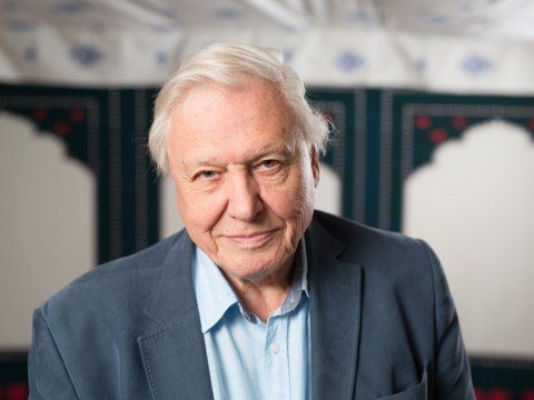 People want David Attenborough on the new £20 note