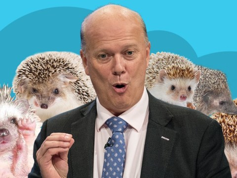 Chris Grayling finally recognised as Britain's hedgehog champion