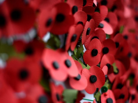 Which side should you wear a poppy on and how much should you donate?
