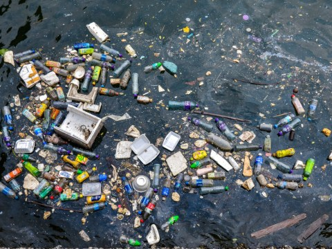 How to reduce plastic waste with easy, everyday changes