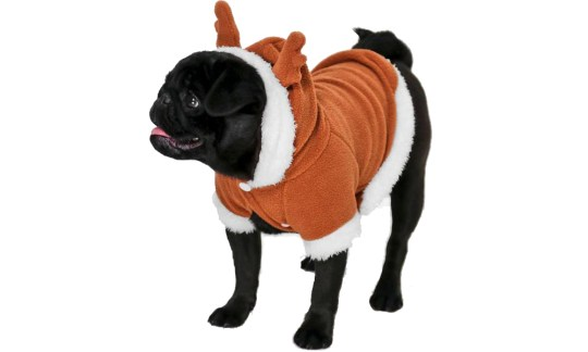 12 Christmas Outfit Ideas For Dogs Metro News