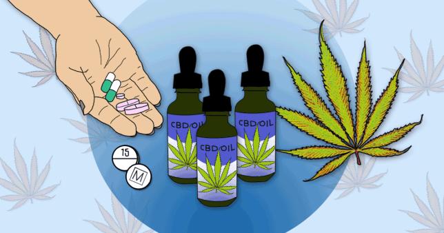 Why cannabis oil aka CBD oil is better than prescription painkillers