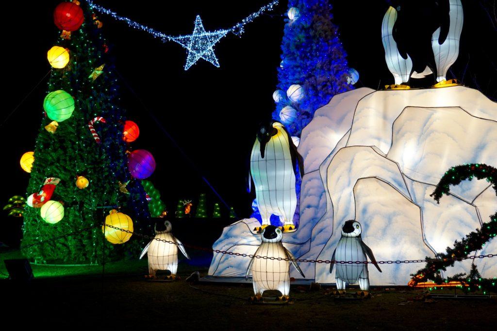 8 wonderful ways to fill your Christmas limbo