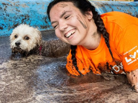 An extra muddy obstacle course for dogs and their humans is traveling around the UK next year