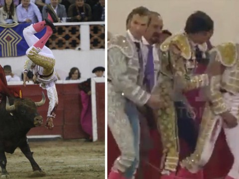 Bullfighter gored in his testicles grabs his balls in pain
