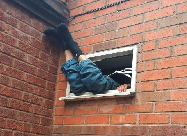 Image result for burglar window
