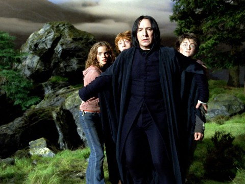 Harry Potter fans spot a clue that show Snape wasn't so bad after all