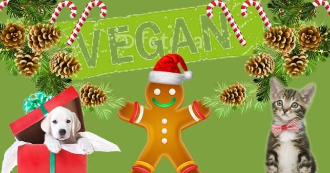 Christmas Gifts For Vegans.15 Great Christmas Gifts For Vegan Children Metro News