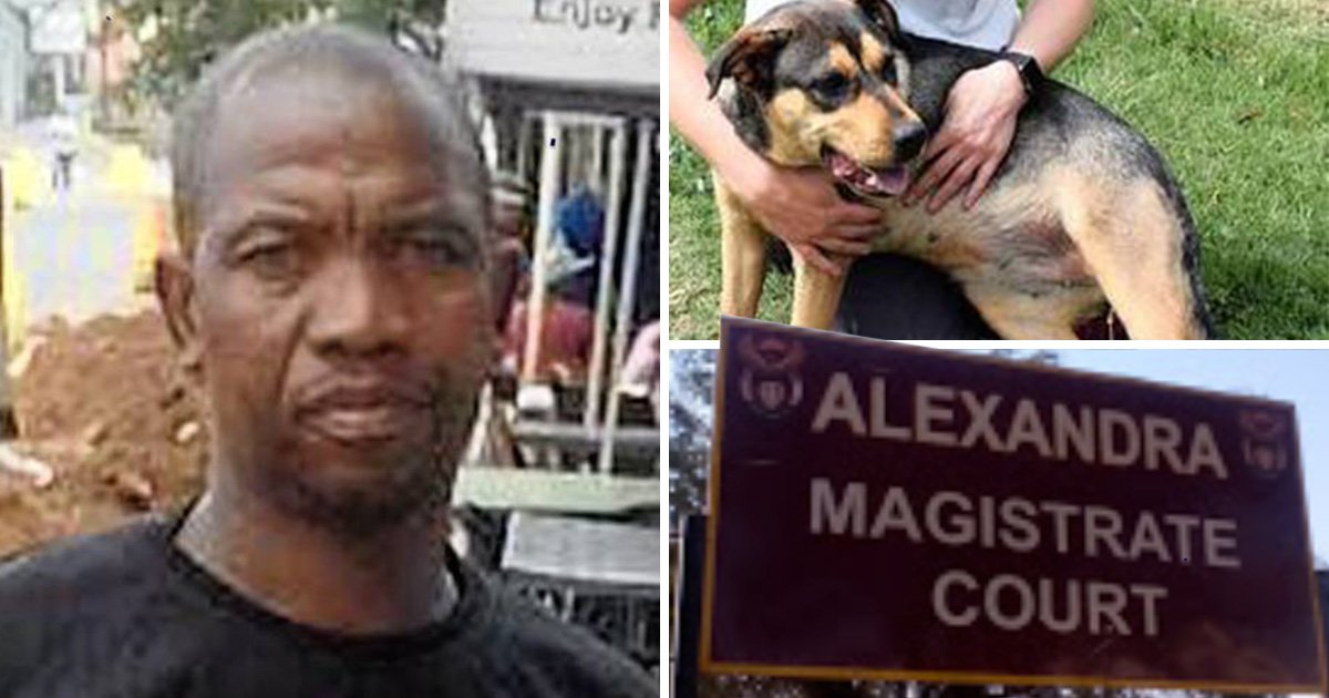 Father who was caught having sex with a neighbour's puppy is spared jail
