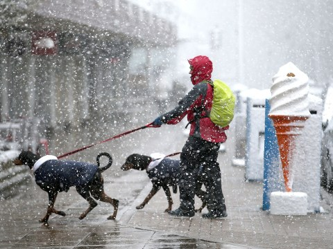 Freezing temperatures could bring first 'significant' snow of the year